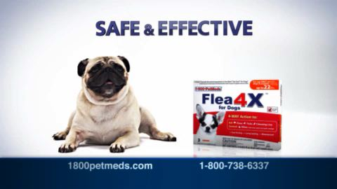petmeds coupons offer codes
