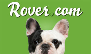 Rover Promo Code For Existing Customers